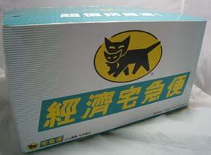 t-cat-88.jpg